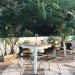 Bushman Café_BAAB