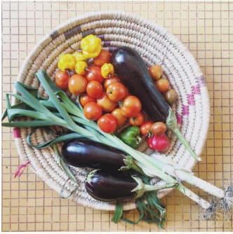 Produits bio, paysans, locavores ou fermiers…